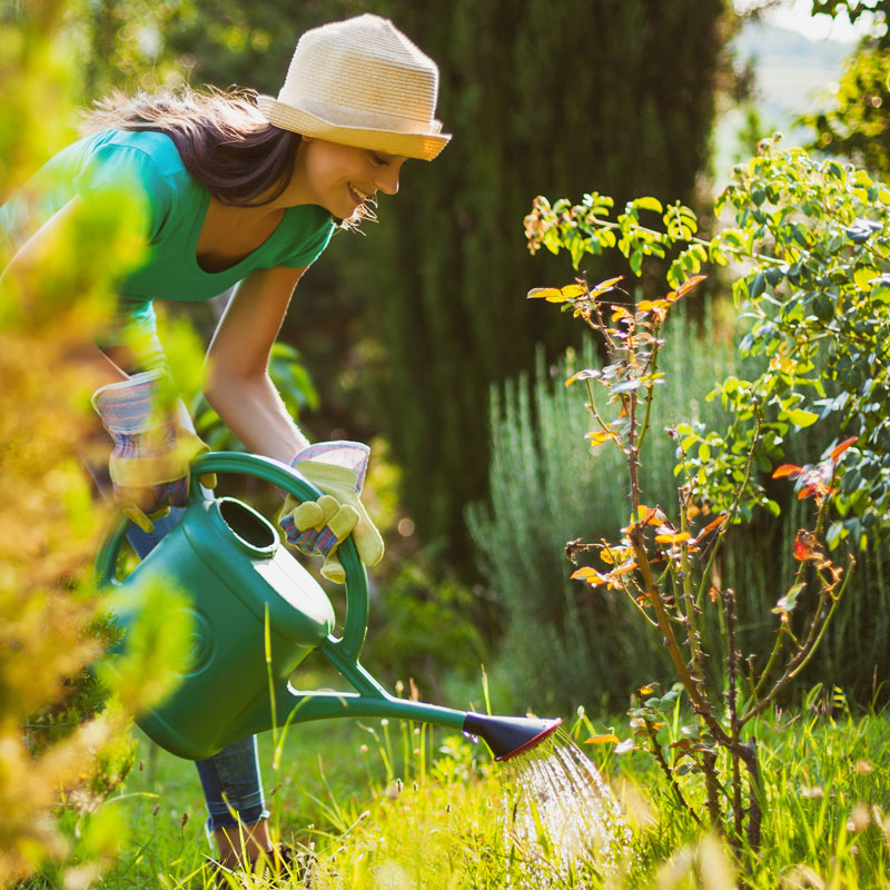 Home, Garden & Tools